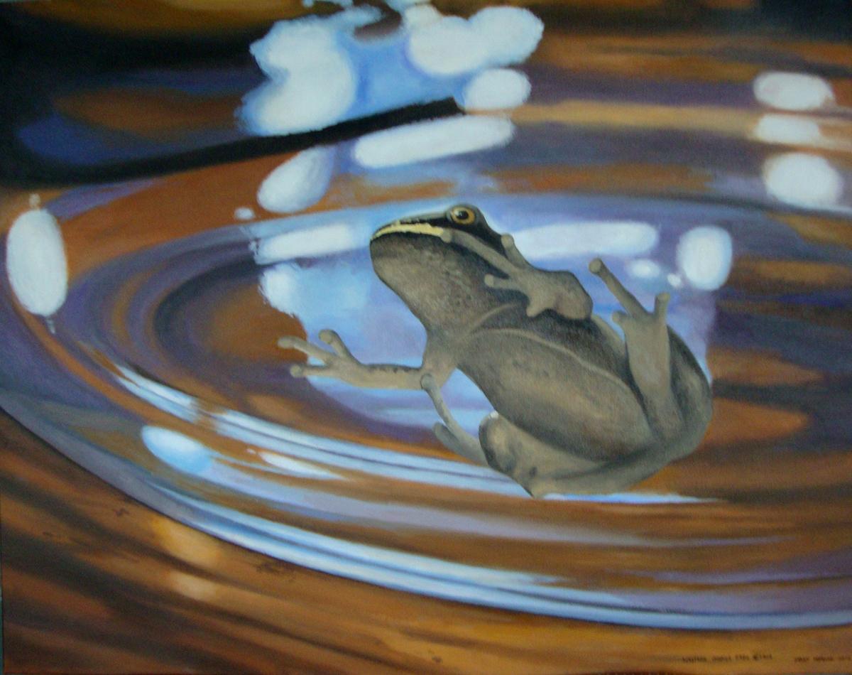 Chorus Frog x 1000