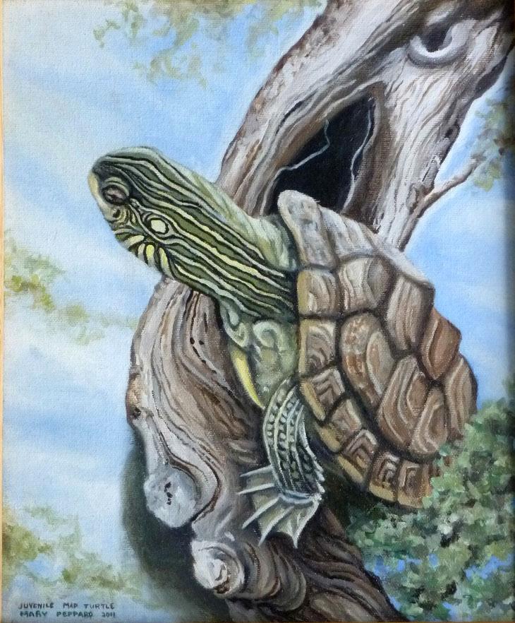 TIFFA-raffle-turtle.jpg