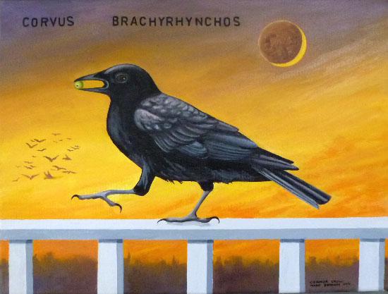 crowsmall.jpg